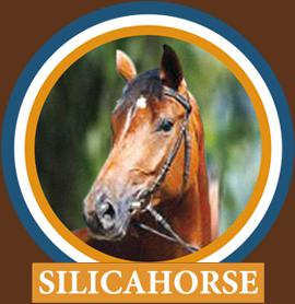 Silicahorse